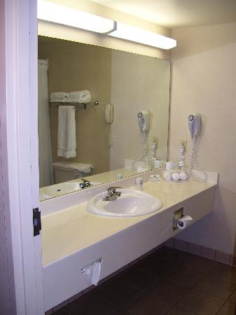 Auburn Place Hotels and Suites: Very large sink area in the bathroom