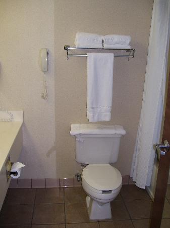 Auburn Place Hotels and Suites: Beautiful view of the toilet