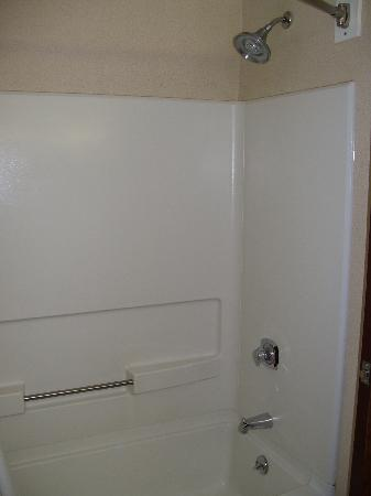 Auburn Place Hotels and Suites: Shower with handle