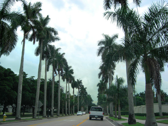 Fort Myers, FL: McGregor Blvd