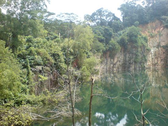 武吉知马自然保护区