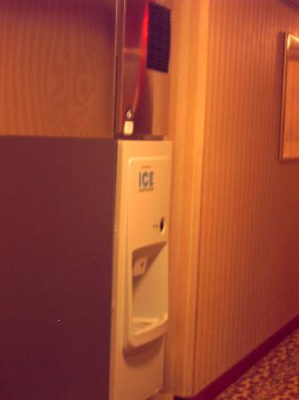 Hawthorn Suites by Wyndham Franklin / Milford Area: ice maker in hallway....?