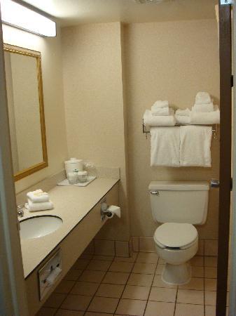 Holiday Inn Sheridan - Convention Center : Bathroom