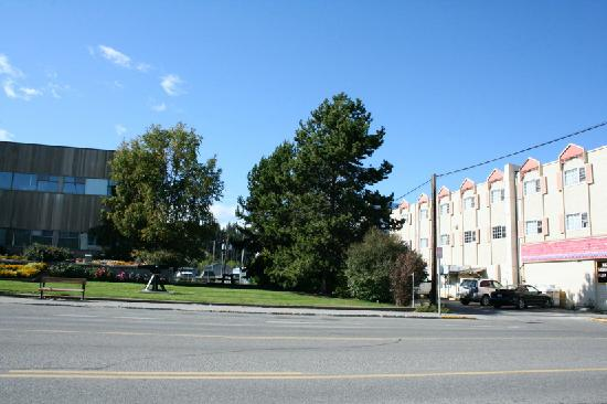The Town and Mountain Hotel: Rear parking of hotel, next to the RCMP
