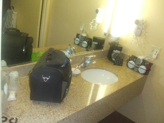 Holiday Inn Hotel & Suites Anaheim - Fullerton: sdb