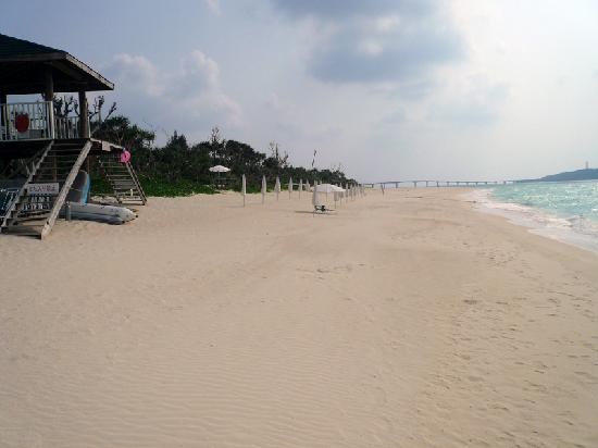Miyakojima Tokyu Hotel & Resorts : 美しすぎる白い砂浜