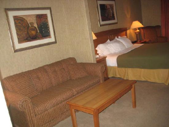 Holiday Inn Express: living room