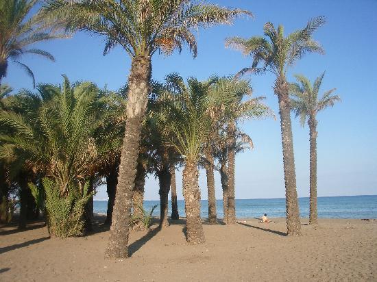 Natali Torremolinos : beach
