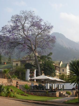 Annie's Lodge Zomba: Viewfrom Annie's Lodge, Zomba