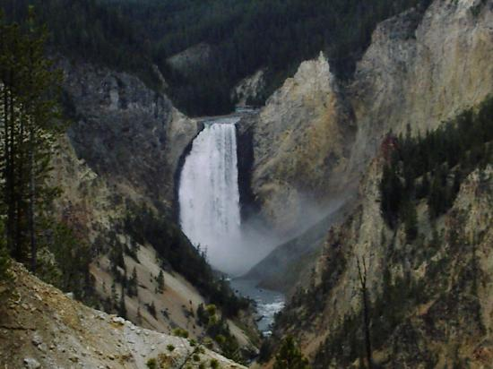 "Best Western Weston Inn: ""lower falls of the yellowstone'"
