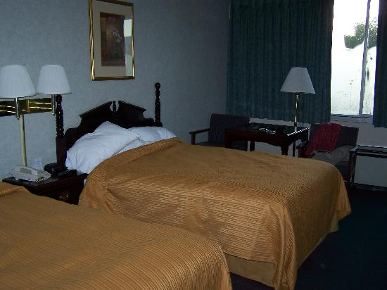 Quality Inn Shenandoah Valley: Another view of room