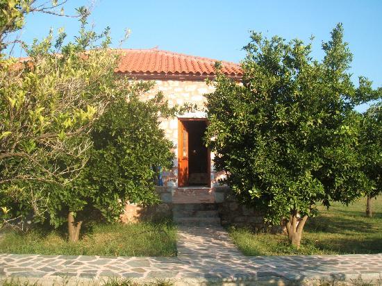 Agroktima Boukouvala Apartments : back of house #3