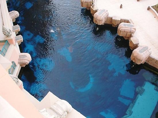 Atlantis, The Palm: view over aquarium