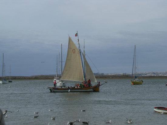 Trigana Boat Trips: Trigana in sail