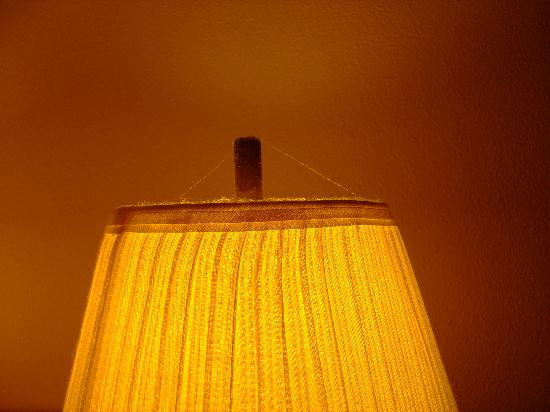 Econo Lodge: Cobwebs in lamp shades - above the bed