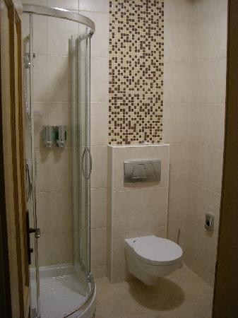 Penzion Hradbova : The bathroom.  Small  but perfectly formed.