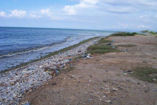 """Coche Island, Venezuela: Playa de Coco - """"Hotel"""" Brisas de Coche / del Mar ***"""