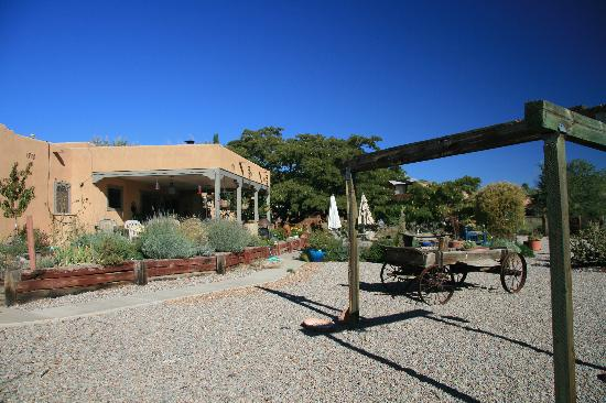Corrales, NM: The backyard of the Chocolate Turtle