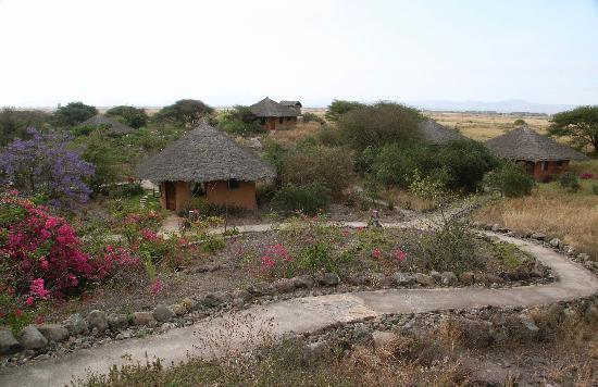 Kia Lodge – Kilimanjaro Airport : The grounds