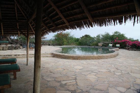 Kia Lodge – Kilimanjaro Airport : Pool