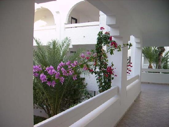 Iberostar Mehari Djerba: fleurs dans les arcades de l'hôtel