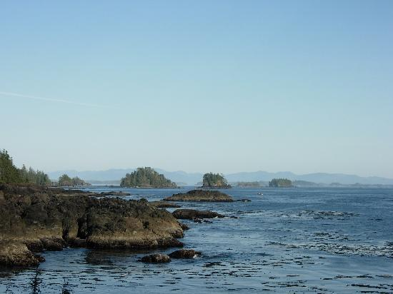 Wild Pacific Bed and Breakfast: Broken Islands Group from Wild Pacific Trail