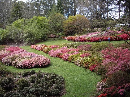 Olinda, Australia: Rhododendrun Gardens