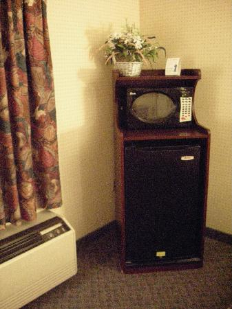 Knights Inn Sandusky OH: Small refrigerator and microwave. ( I didn't use either one )
