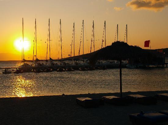 Neilson Phokaia Beachclub: Sunset view of yachts