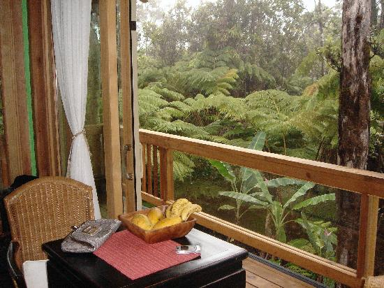 At the Craters Edge: Waking up in a rain forest with the volcano only minutes away