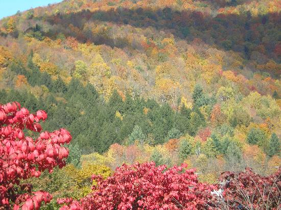 Weathertop Mountain Inn: look at those colors!