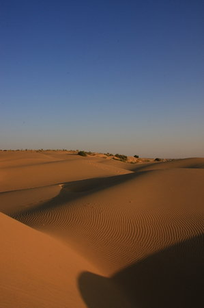 Jaisalmer, Hindistan: Dawn at the Khuri dunes