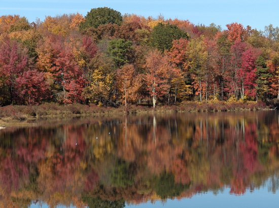 White Haven, PA: Fall in Love