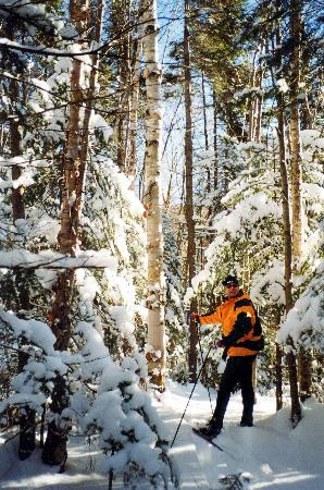 Lac-Megantic, Canada: Cross country skiing in Megantic