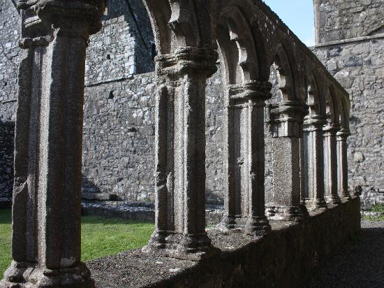 Fore Abbey: Ireland: co. Meath - Fore: the Cloister