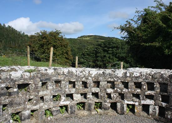 Fore Abbey: Ireland: co. Meath - Fore: the Columbarium