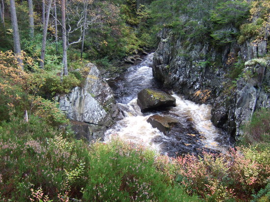 Badenoch and Strathspey, UK: Druim An Aird walk.