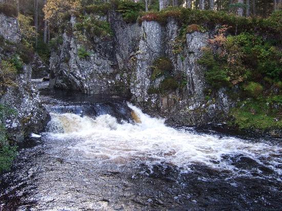 Strathmashie Forest: Druim An Aird walk.