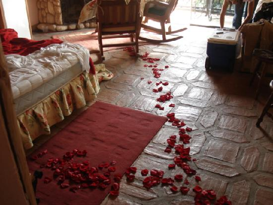 Hotel Klein Dorf: the room (roses not included)