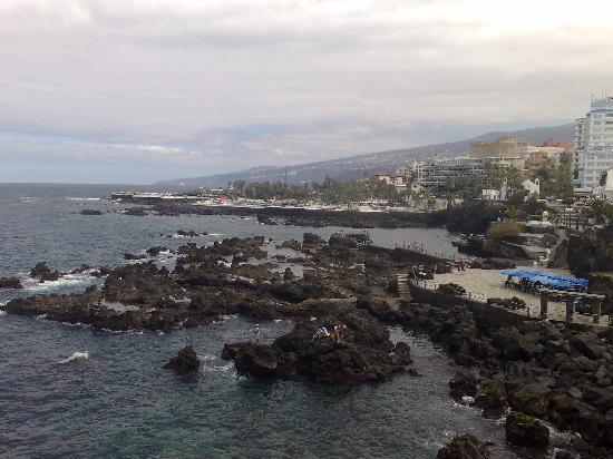 Loro park picture of catalonia las vegas puerto de la cruz tripadvisor - Hotel catalonia las vegas puerto de la cruz ...