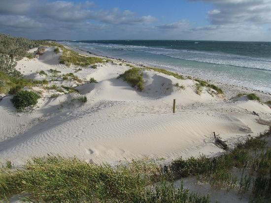 Lancelin Australia  city photos : The 4WD Foto de Lancelin, Austrália Ocidental TripAdvisor