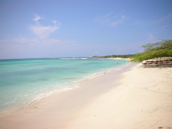 Caribbean Palm Village Resort : Arashi beach was close and awesome!
