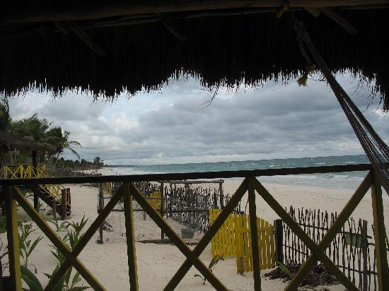 Nueva Vida de Ramiro: turtle sanctuary and beach
