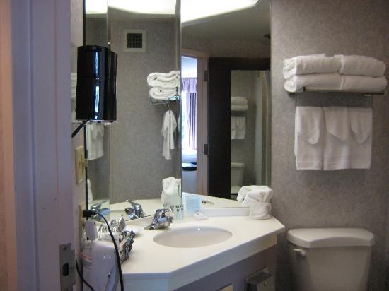 Hampton Inn Dubois : Small counter in the bathroom