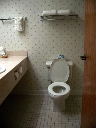 Vernon Downs Casino and Hotel: the bathroom, shower to the right of commode