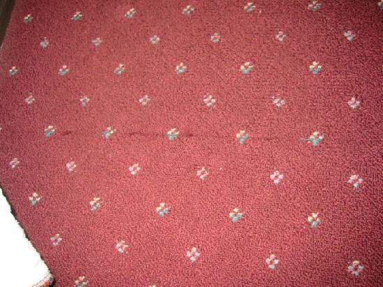 Days Inn Medford : carpet rip