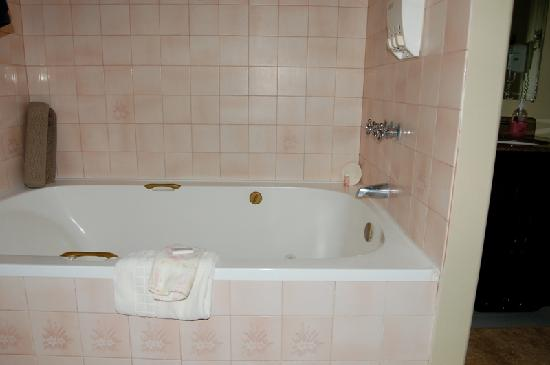 Sunnyside Inn Bed and Breakfast: 2 person jacuzzi tub
