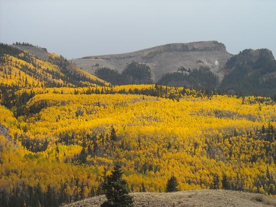 Rocky Mountains: Fall Colors