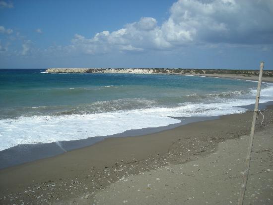 Venus Beach Hotel: Lara Beach