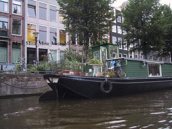 Zoom Amsterdam